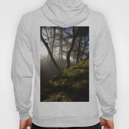 Magical Forest #nature #decor #society6 #buyart Hoody