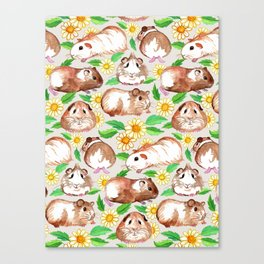 Guinea Pigs and Daisies in Watercolor Canvas Print