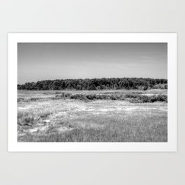 Taylor Bray Farm Marsh Art Print