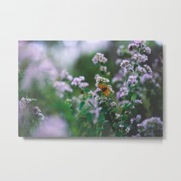 Butterfly in the flowers Metal Print