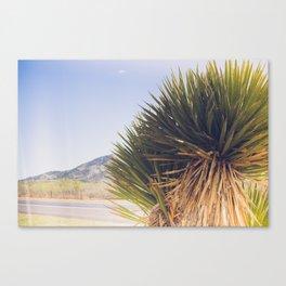 Wanderlust - The Lost Highway Canvas Print
