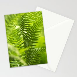 Green Fern Abstract Stationery Cards
