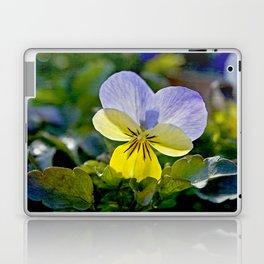 Pansy Perfection Laptop & iPad Skin