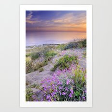 Sunset at the beach. Flowers on the sand. Art Print