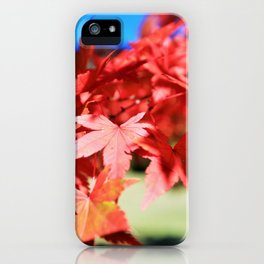 Japanese Maple Leaves 2 iPhone Case
