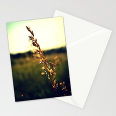 Prairie Wild - Color Stationery Cards