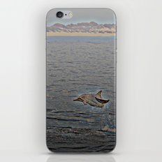 Dolphin Leap iPhone & iPod Skin