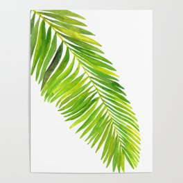 Tropical Collection Part IV Poster