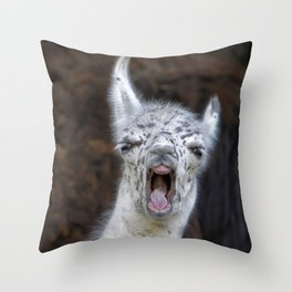 Young Lama with a big mouth | Junges Lama mit grosser Klappe Throw Pillow