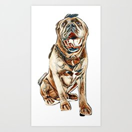 cane corso in front of white background        - Image Art Print
