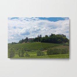 vineyards in France Metal Print