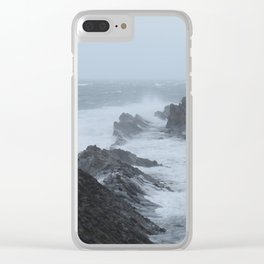Shore Acres near Coos Bay, Oregon Clear iPhone Case
