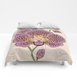 Wild Orchid Comforters