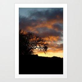 Mendocino Sunset Art Print