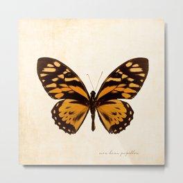 Orange Butterfly Art Metal Print