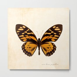 Orange Butterfly Art Metal Print