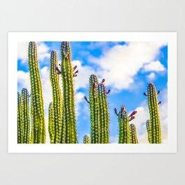 blue skies & cacti Art Print