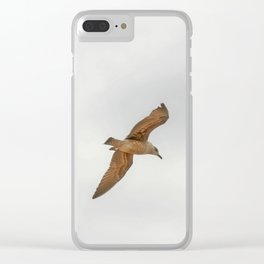 Seagull bird flying Clear iPhone Case