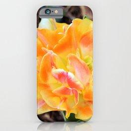 Marmalade Colored Tulip iPhone Case