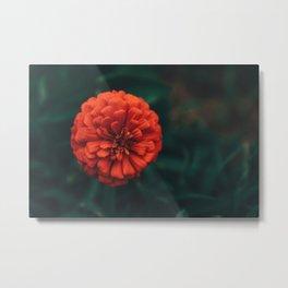Divine Floral Metal Print
