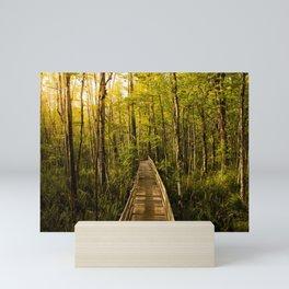 Boardwalk Through the Swamp Mini Art Print