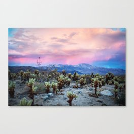 Desert Wonder Canvas Print