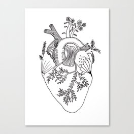 Growing heart Canvas Print