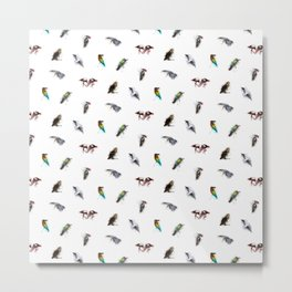the living bird is not its labeled bones Metal Print