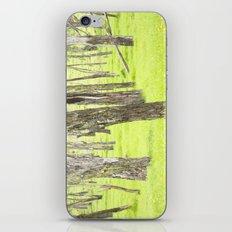 Neon Green  iPhone & iPod Skin