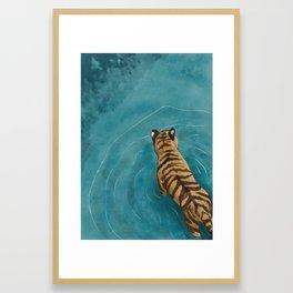 Tiger wading Framed Art Print
