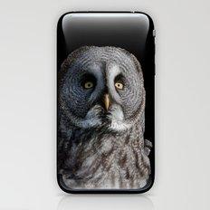 GREY OWL iPhone & iPod Skin