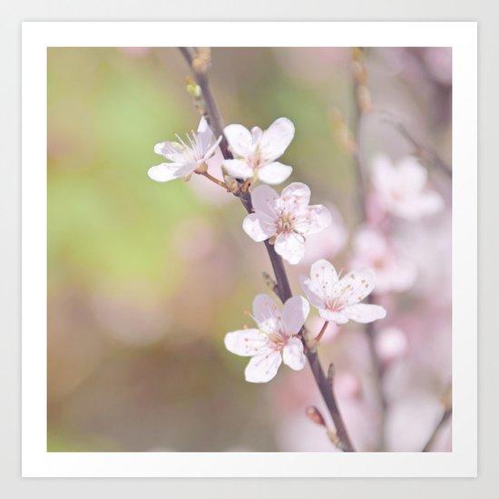 Fairytale Cherry Blossom Art Print