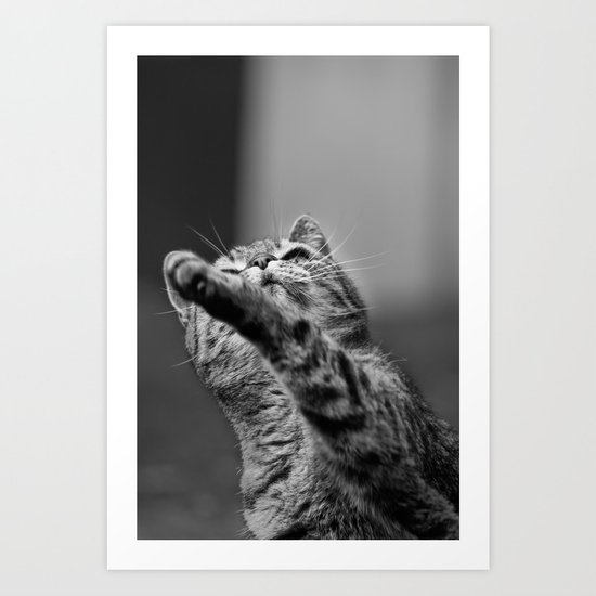 my little cat Art Print