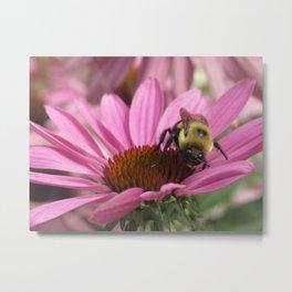 Bee Metal Print
