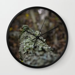 Lichen It Wall Clock