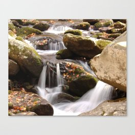Fine Art Photography  Photograph Fall Day, Landscape Tennessee Mountains Stream Canvas Print