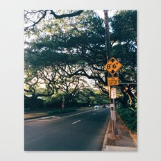 Honolulu Road Canvas Print