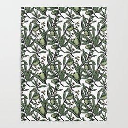 Olives pattern Poster