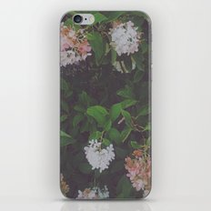 Ombré Flowers iPhone & iPod Skin