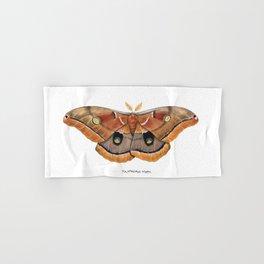 Polyphemus Moth (Antheraea polyphemus) II Hand & Bath Towel