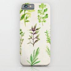 Watercolor Herbs iPhone 6s Slim Case
