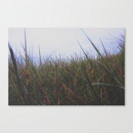 Grassy Fields Canvas Print