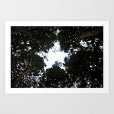 Star Trees Art Print