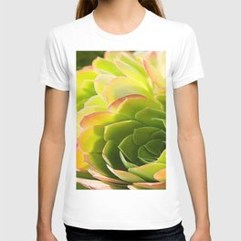 BEAUTIFUL SUCCULENT T-shirt
