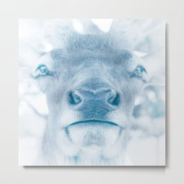 Winter Elk Metal Print
