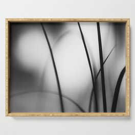 Black and White Abstract Nature Photography, Dark Grey Modern Abstract Photo, Neutral Gray Picture Serving Tray