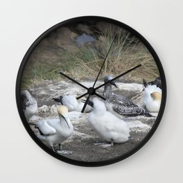 Gannet Family Wall Clock