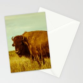 Vintage Bison - Buffalo on the Oklahoma Prairie Stationery Cards