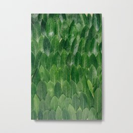 Green Plant Leaves Metal Print