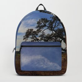 Lone Oak Tree, Laguna de Santa Rosa, Sonoma County Backpack